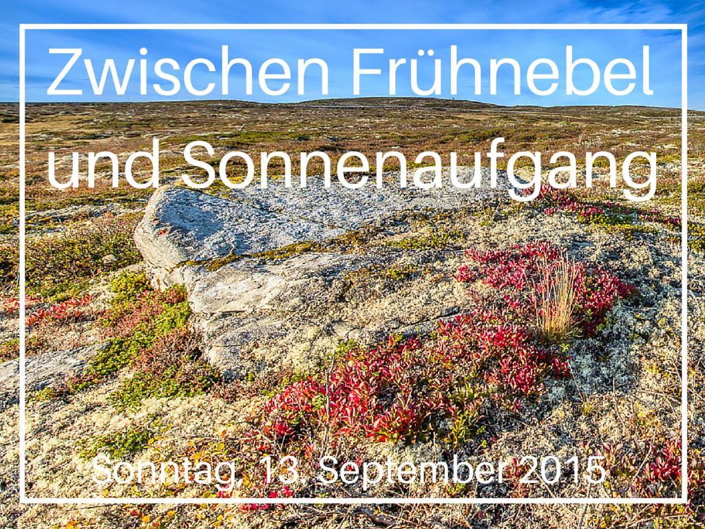Zwischen Frühnebel und Sonnenaufgang_Fotokurse_Kölner Fotomarathon