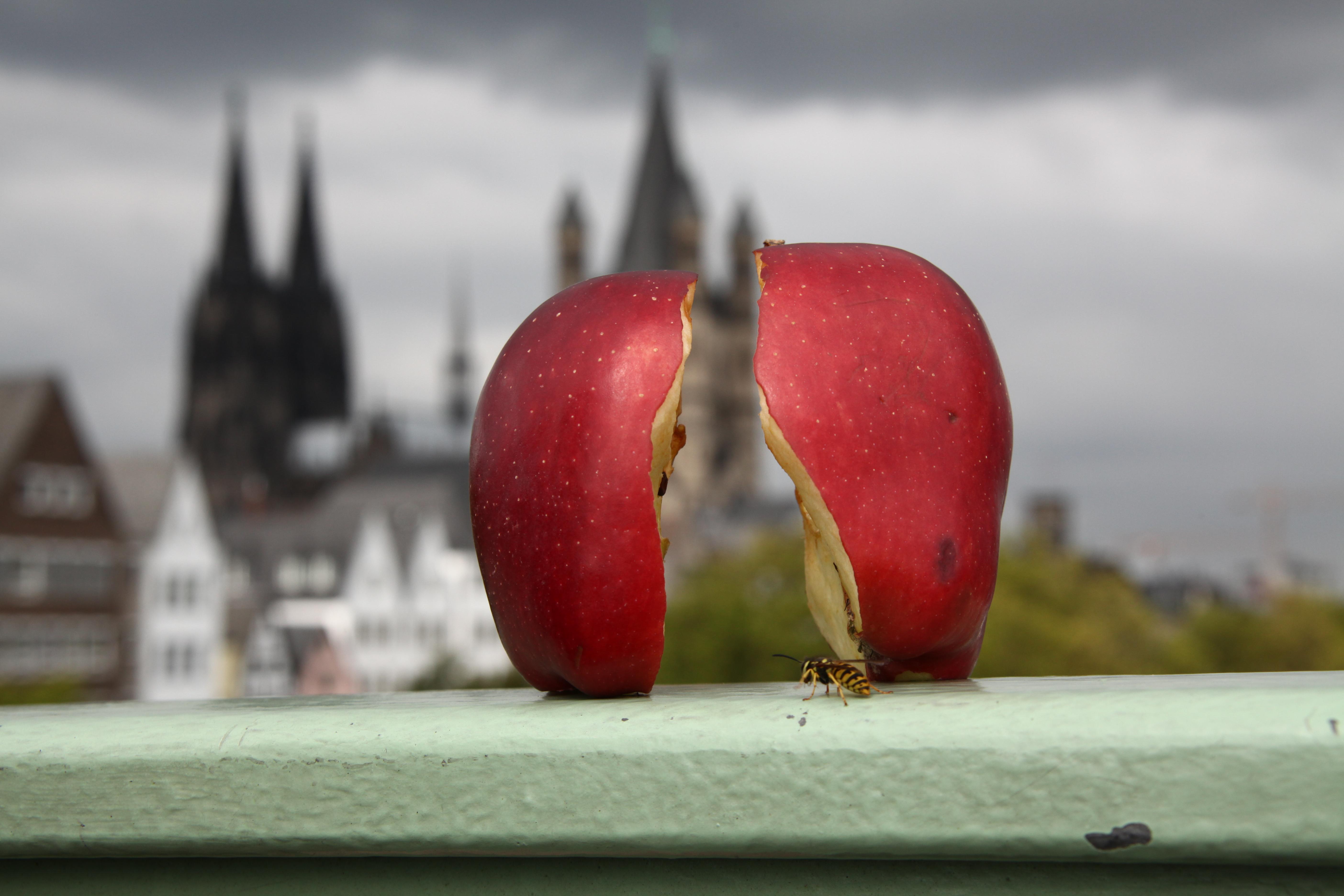 Apfel mit Dom im Hintergrund